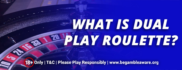 What-is-Dual-Play-Roulette